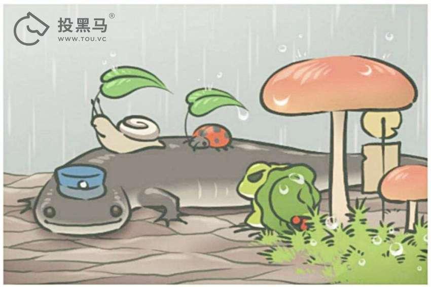 """青蛙又凉了,你为何不养""""呱儿子""""了"""